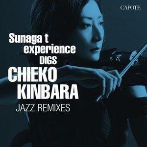 Sunaga t experience DIGS CHIEKO KINBARA ~CHIEKO KINBARA JAZZ REMIXES